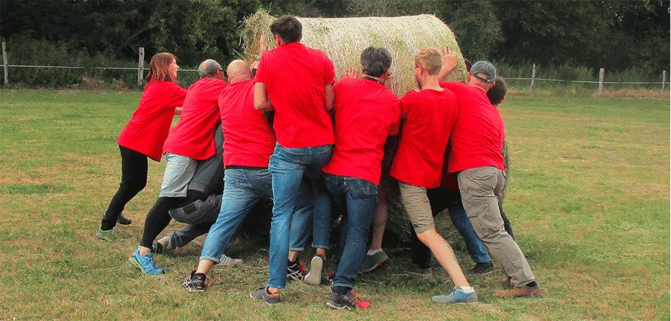 Großbauer gesucht: Das assona-Sommerfest mal anders